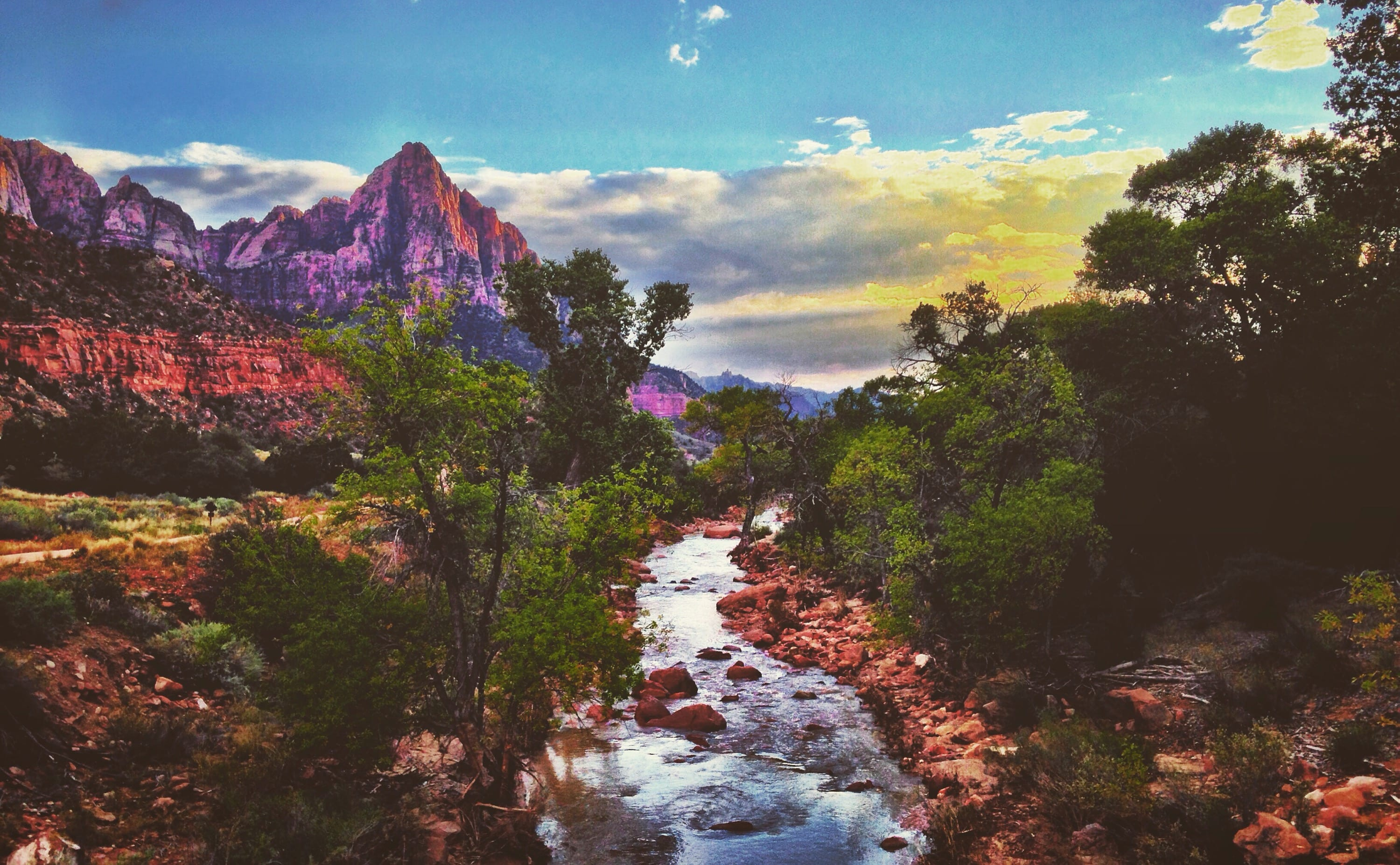 Watchman Campground at Zion National Park