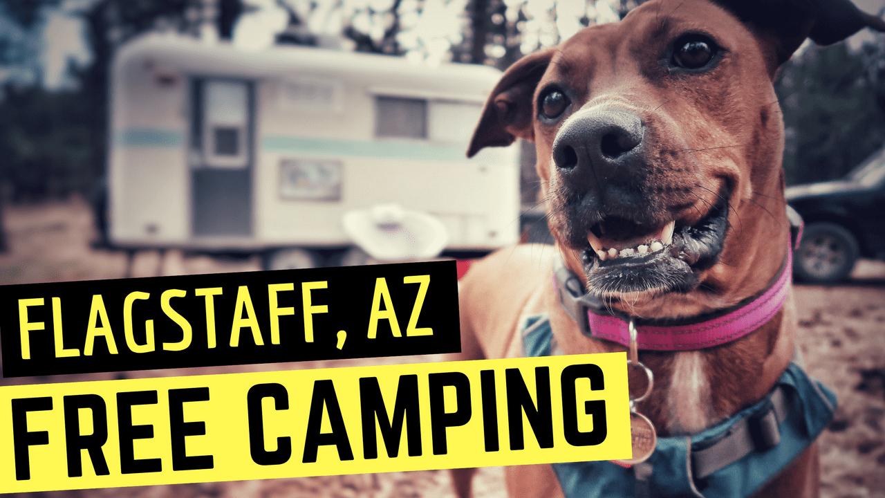 Free Camping in Flagstaff, Arizona