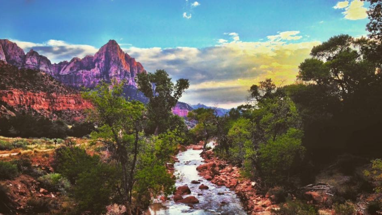 The ULTIMATE Zion National Park Camping Guide
