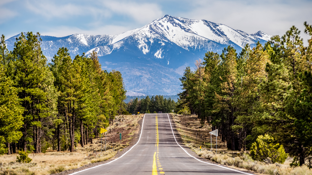 7 Amazing Flagstaff Camping Spots (With YouTube Video Tours)