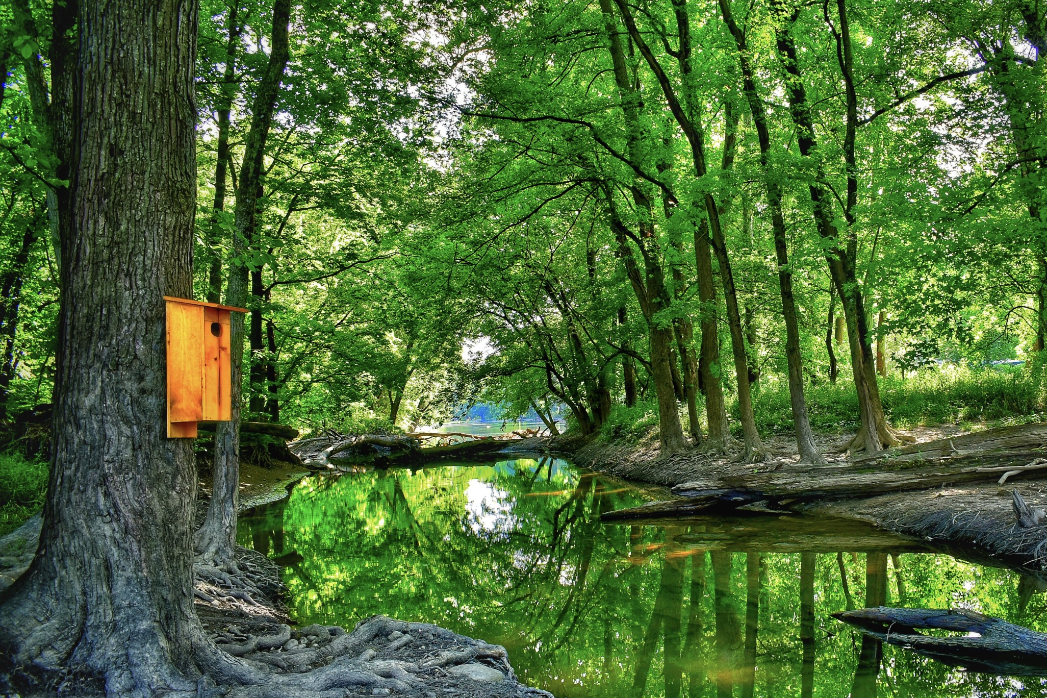7 Most Beautiful Campgrounds in Indiana