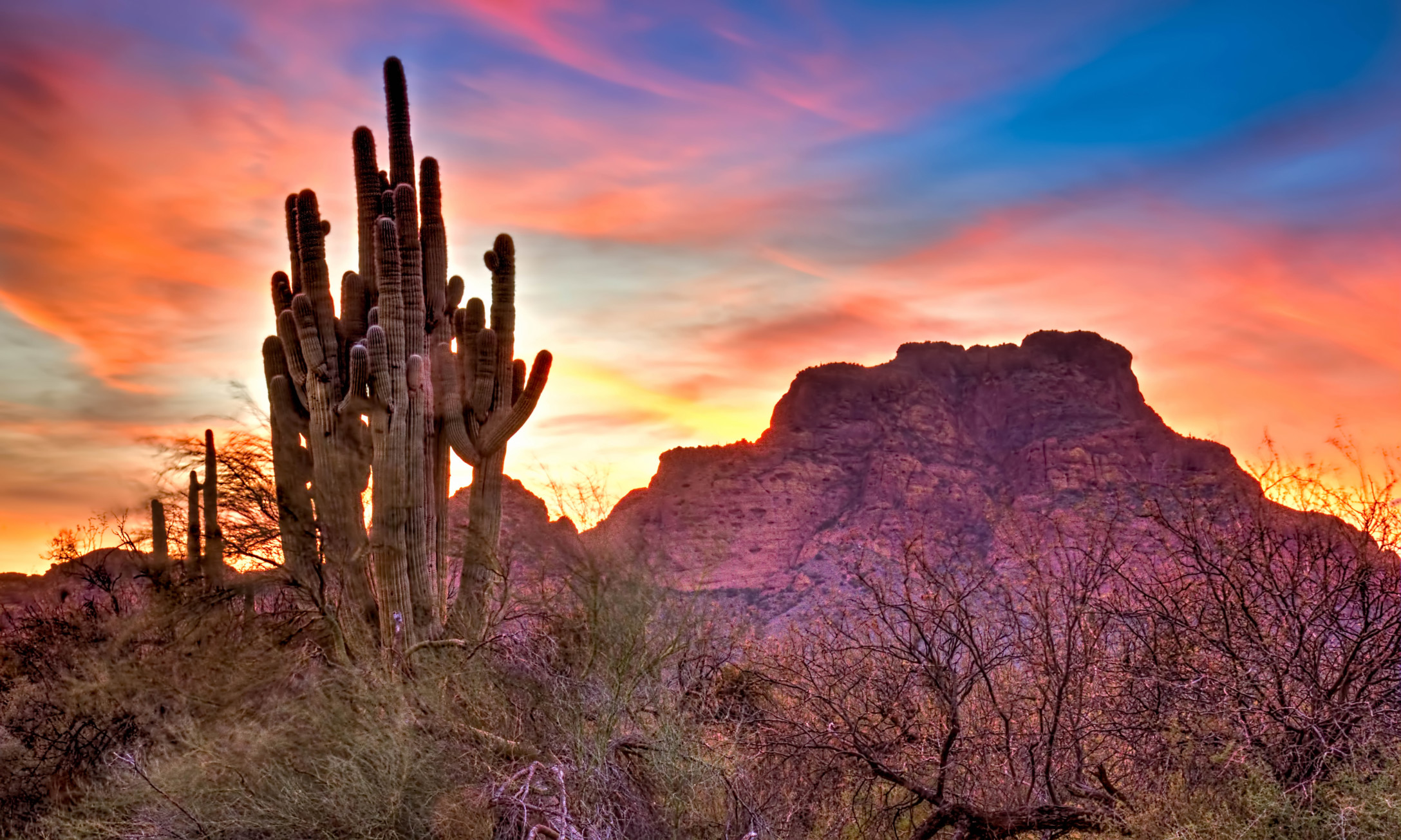 The Best Free Camping Near Saguaro National Park