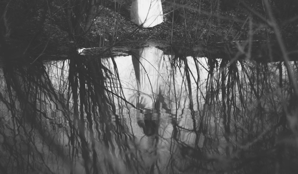Reflection of demon woman in a pond.